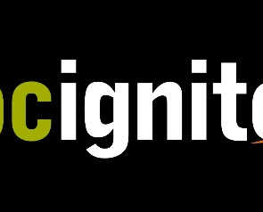 DOCignite: Building a Sustainable Career in Docs (January 23, 2020)